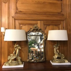 C19th French Pair of Brass...